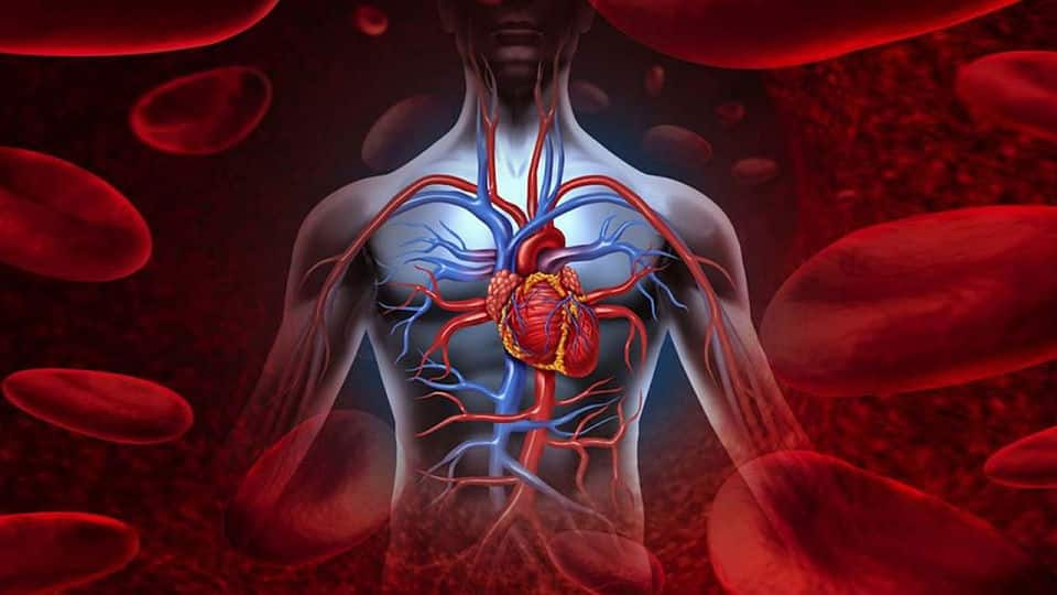 Afecciones circulatorias, la principal causa de muerte
