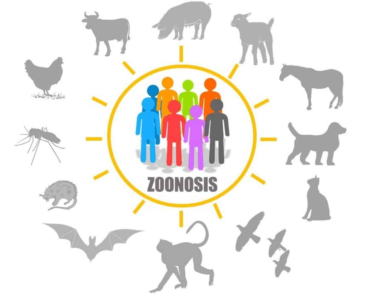 DIA MUNDIAL DE LAS ZOONOSIS.