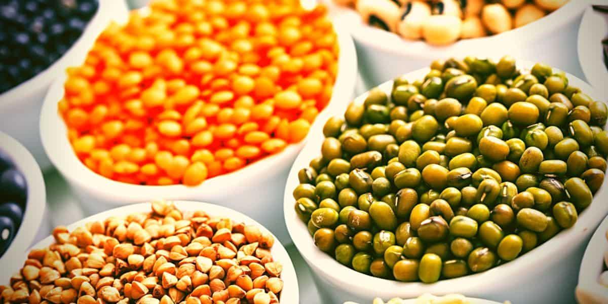 El reto de hacer alimentos con proteínas vegetales