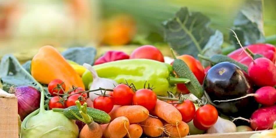 Alimentos, desarrollo sostenible y salud